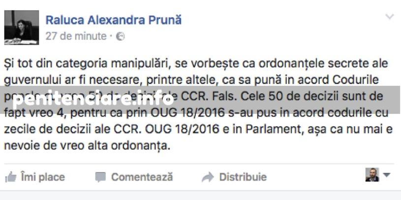 Raluca Pruna s-a copt si spune adevarul Codurile penale