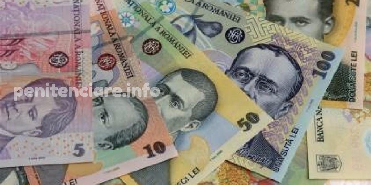 Salarizare - Aviz pozitiv pentru amendamentul care creste salariile