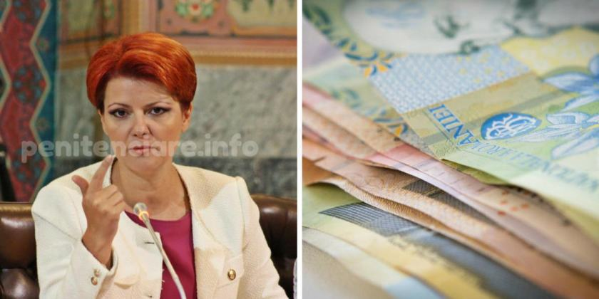 100 de lei lunar la salariul potrivit unui algoritm al Liei Olgutai Vasilescu